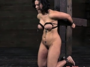 Nipple clamped sub gagged and restrained