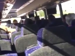girl sucking dick on a public bus