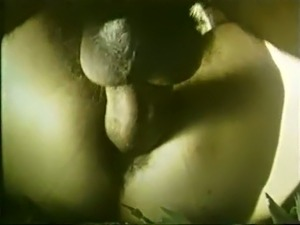 Dirty classic white hoe with hairy pussy having anal sex outdoors