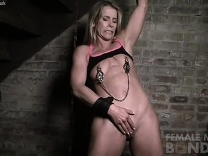 Claire Nipple Clamps Hurt or DO They
