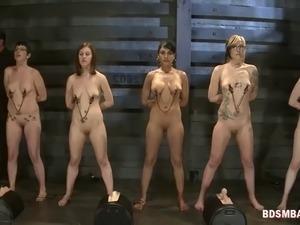 sluts get their nipples clamped